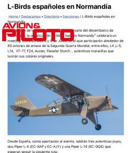 Plane y Piloto